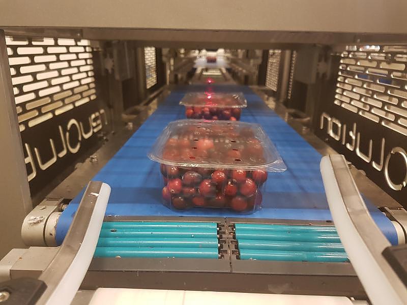 pakowanie owoców
